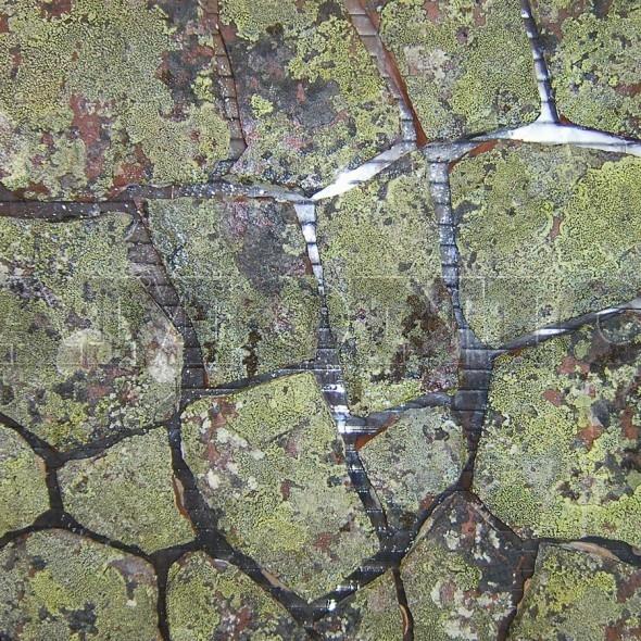 Кварцитопесчаник мурманский темно-красный с лишайником